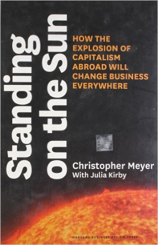 Standing on the Sun by Christopher Meyer