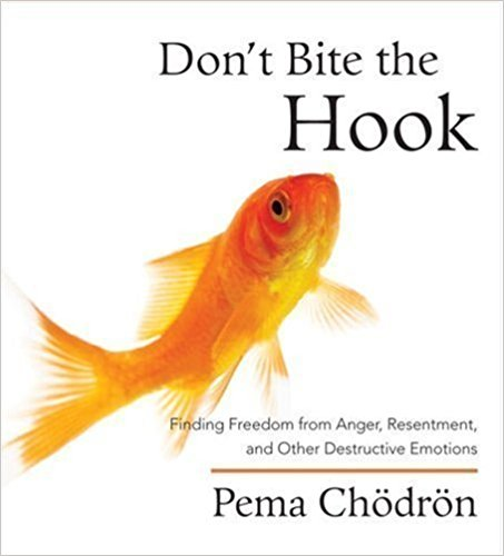 Don't Bite the Hook by Pema Chodron